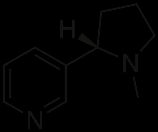 ニコチンが体に与える影響